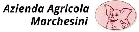 Azienda Agricola Marchesini Logo